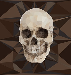 Geometric triangular of human skull vector image