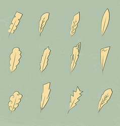 Vintage feathers vector