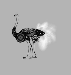 african ostrich bird monochrome graphic animal vector image
