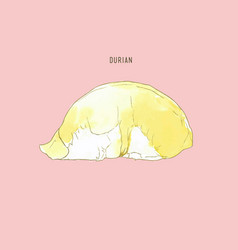 Durian water color sketch vector