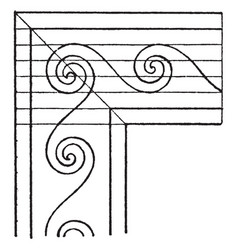 Evolute spiral angles is a wave pattern that vector
