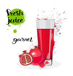 Garnet juice fresh hand drawn watercolor fruits vector