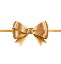 Golden satin ribbons decorated with bow posh vector
