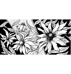 japanese flower background floral echinacea vector image