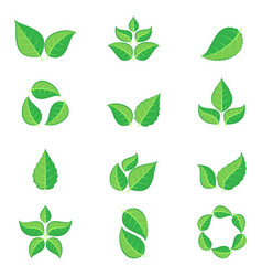 green leaves icons vector image vector image