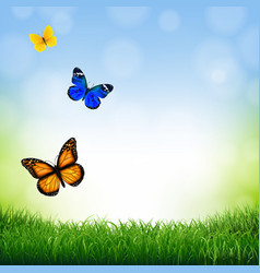 spring landscape with butterfly vector image vector image