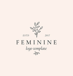 abstract feminine sign symbol or logo vector image
