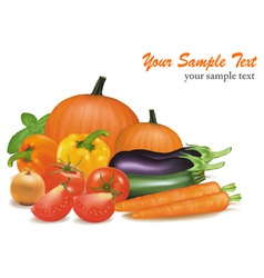 Big colorful vegetables vector