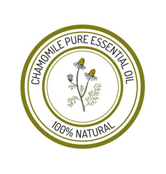 chamomile essential oil label aromatic plant vector image