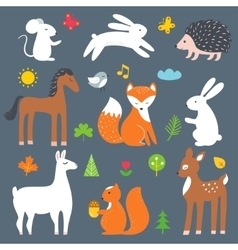 Forest and woods animals cartoon vector