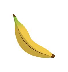 Healthy fruits design vector