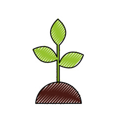 plant growing investment concept business vector image