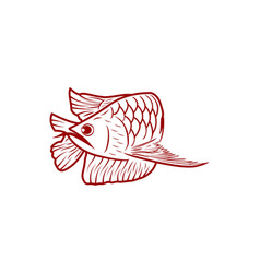 red arowana fish mono line logo designs vector image