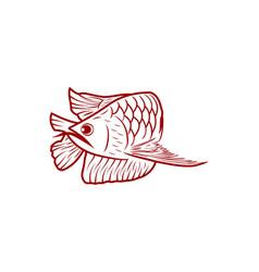 Red arowana fish mono line logo designs vector