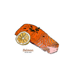 Salmon steak hand drawn vector