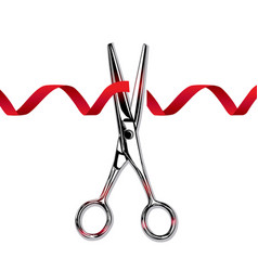 steel scissors cut the red ribbon vector image