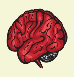brain3 resize vector image