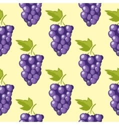 Bunch of grapes seamless background vector image