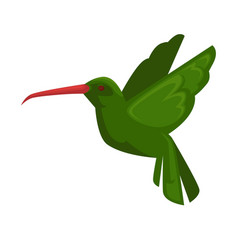green hummingbird in flying position isolated on vector image vector image