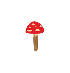 amanita mushroom with red spotted cap isolated on vector image