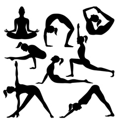 silhouettes yoga positions vector image