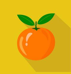 orange flat icon vector image
