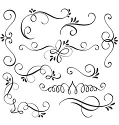 set of calligraphy flourish art with vintage vector image