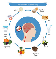 best foods for stroke recovery best foods for vector image