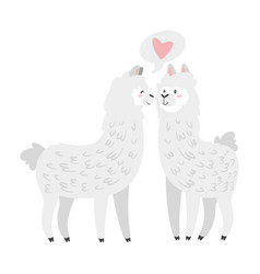 cute lama alpaca animal vector image