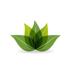 Green leaf lotus icon vector