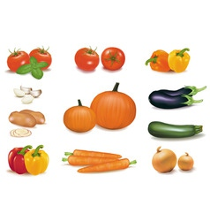 group of vegetables with pumpkins vector image