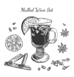 Ink hand drawn mulled wine set vector image
