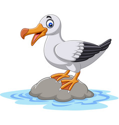 cartoon cute bird albatross standing on a rock vector image
