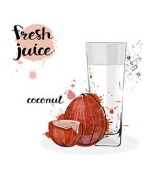 coconut juice fresh hand drawn watercolor fruits vector image