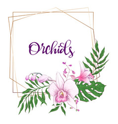floral design geometric frame orchid eucalyptus vector image