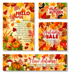 Hello autumn fall season sale banner template set vector