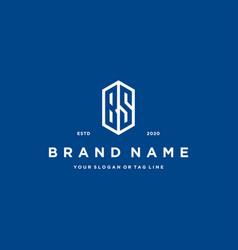 Letter bs logo icon design vector
