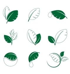 Green leaf leaves symbol icon set vector image