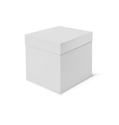 blank cardboard box template on white background vector image
