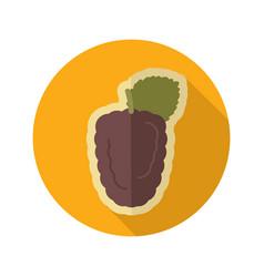 blackberry bramble flat icon berry fruit vector image vector image