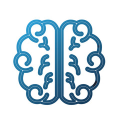 brain school knowledge thinking science study vector image