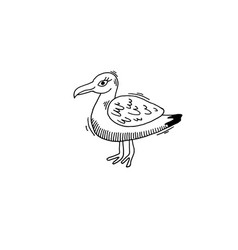 gull bird sketch drawing icon summer themed vector image