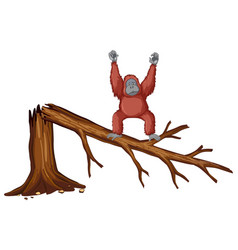 Monkey on broken branch vector