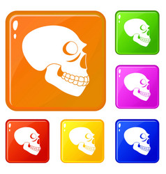 Skull icons set color vector