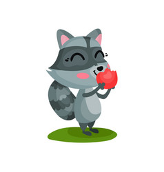 lovely raccoon eating ripe red apple cartoon vector image