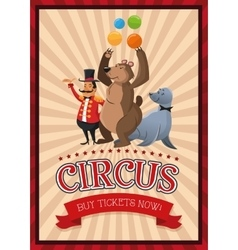 Presenter bear and seal cartoon of circus vector image