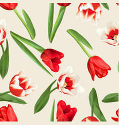 Seamless pattern with red and white tulips vector