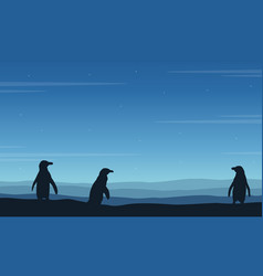 Silhouette of penguin on blue background vector