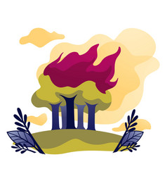 Wildfire ecological problem fire in forest trees vector