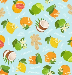 Citrus coconut and ginger seamless pattern on blue vector image vector image